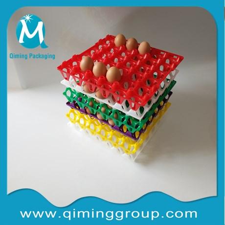 Plastic Chicken Egg Trays