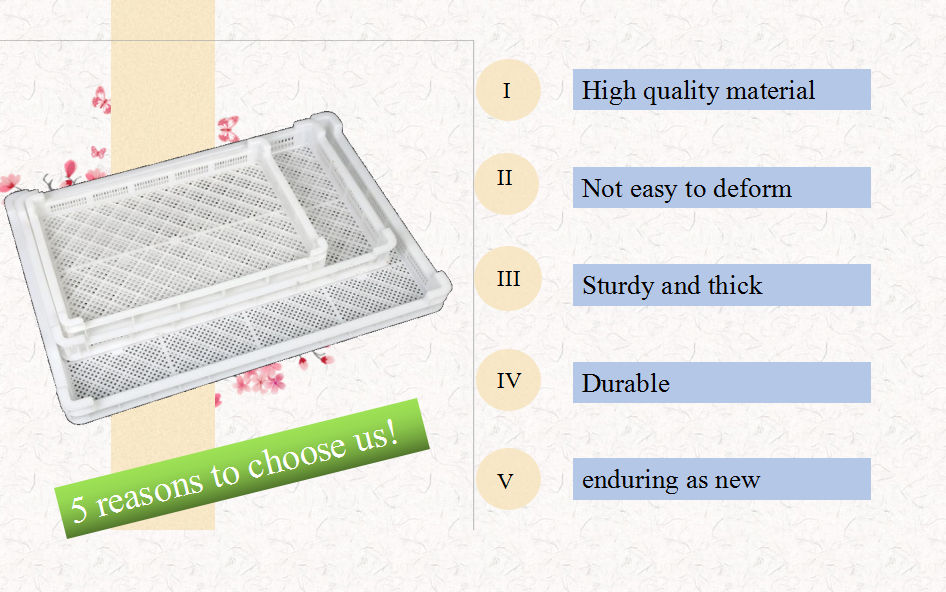 Advantage plastic drying trayfreezing tray