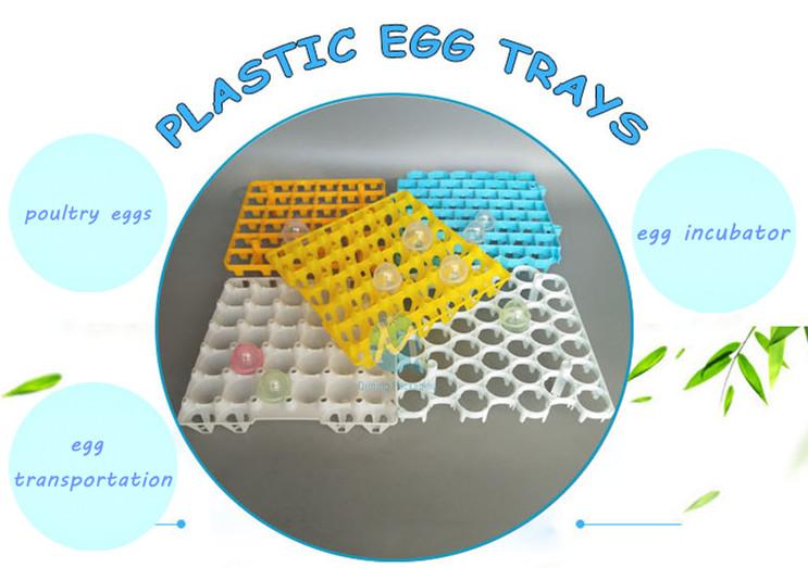 plastic egg tray HDPE Plastic Egg Trays