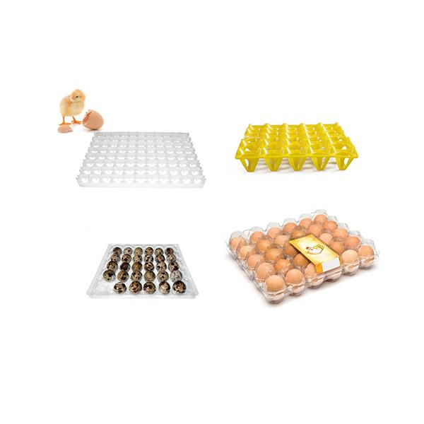 Wholesale Food Grade Clear Blister Plastic Chicken Egg Tray quail egg packaging box incubator egg trays