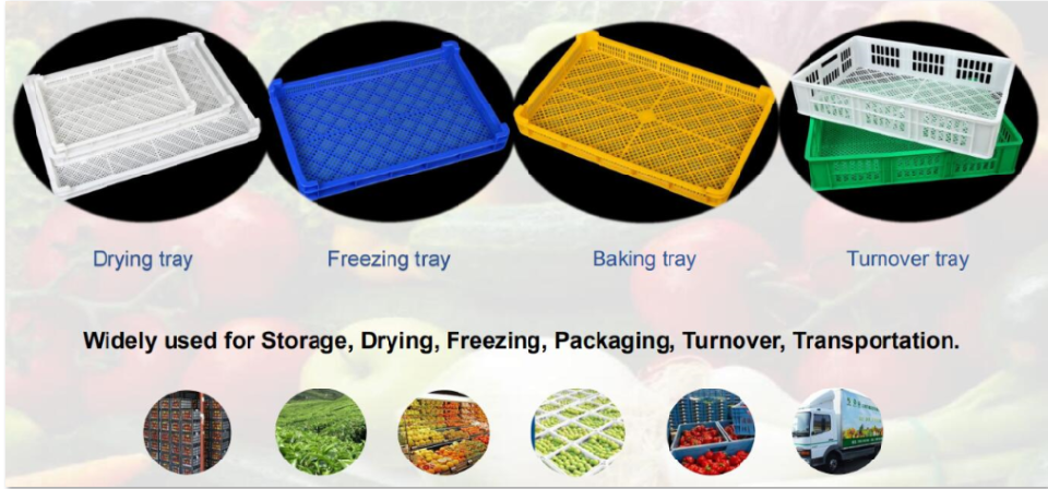 Plastic Pasta Drying Rack Drying Tray